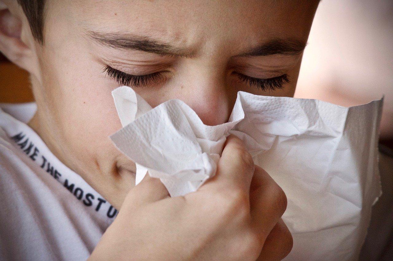 Pollenallergie Hausstaub und Tierhaar Allergie