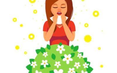 Pollen und Gräser Allergien 2021 – MORA Bioresonanz Wien