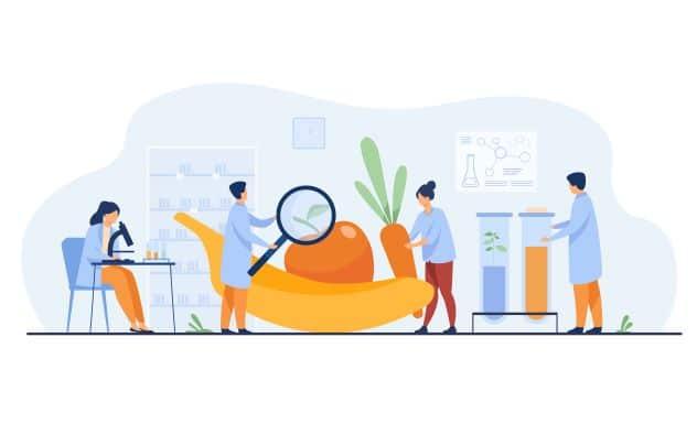 Bioresonanz Wien: E Nummern Nahrungsmittel